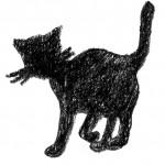 17_Katze